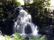 水量の増えた沢のでは滝が見えた