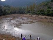 水抜き後の滝頭下池