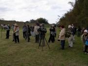 河畔林の野鳥観察