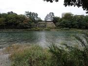 金色島から見る吉田城隅櫓