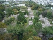 豊橋市役所13階から眺める豊橋公園