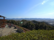 展望ツツジ園からの眺望