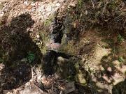炭焼き窯の跡