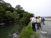 朝倉川定例自然観察会風景