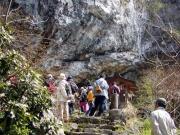コノシロ池の石灰岩のようす