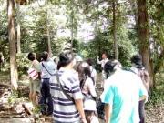 鎮守の森の様子と自然解説