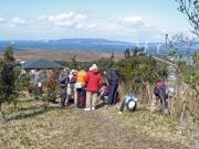 山頂での植物観察