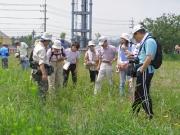 笠山広場での外来植物調査