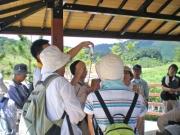 ギンヤマのヤゴの観察風景