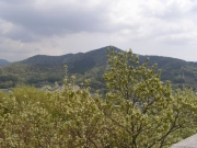 展望台からの定点観測 手前のコナラが芽吹き始めました 3月の画像と比較してください。