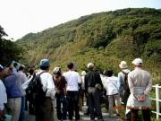 古山山麓からタカたちを観察