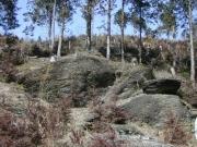 蛤岩の周辺(2004年4月)