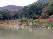 紅葉の始まった修景池