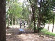 河畔林を緑地として整備した場所