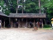 乗馬を待つ馬たち