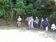 照葉樹林の観察
