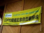 COP開催記念の旗