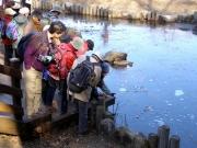 池の氷の温度は0.5℃、池の中は-2℃