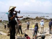 三河湾の漁業についての解説
