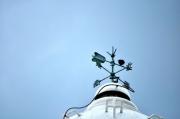 伊良湖岬灯台に留まるイソヒヨドリ