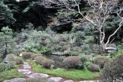書院からの庭園