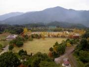 展望塔からの公園風景