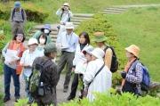 和風庭園の植物観察とトンボの話