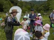 子どもたちが採取した昆虫の解説