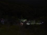 夜の湿原を観察