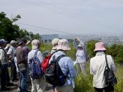 石巻山の地質解説