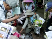 石巻神社の石段で見つけられたカタツムリの解説
