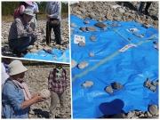 礫を豊川周囲の地質に分類