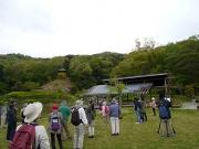 修景庭園広場で周囲の木々を観察