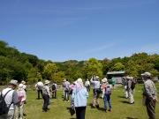 シイの花が目立つ修景庭園の周囲