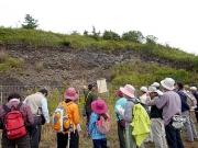 蛇紋岩は天然の柵