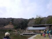 3月の修景庭園周囲