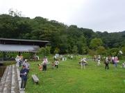 修景庭園で虫採り