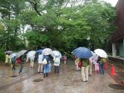 雨の中の観察会
