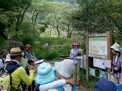 葦毛湿原の名前の由来の解説