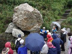 地面と異なる岩の解説