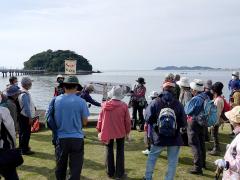 竹島付近で見られる野鳥の解説