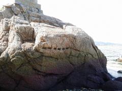 名古屋城石垣採石丁場の跡とみられる矢穴